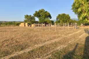 azienda-agricola-casale-dei-mattonari-umbria